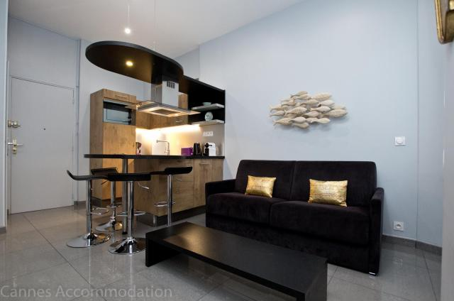 Holiday apartment and villa rentals: your property in cannes - Hall â?? living-room - Francie