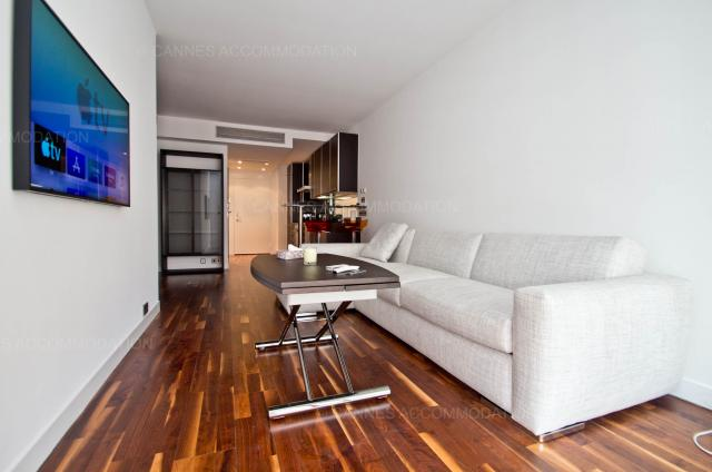 Cannes Film Festival 2020 apartment rental D -76 - Details - GRAY 2B2